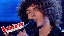 Maxime Leforestier – Mon frère | Côme | The Voice France 2015 | Finale