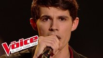 Leonard Cohen – Hallelujah | Lilian Renaud | The Voice France 2015 | Finale