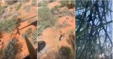 Caçador cai do helicóptero num safari na África