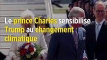 Le prince Charles sensibilise Donald Trump au changement climatique