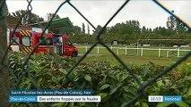 Pas-de-Calais : deux enfants gravement frappés par la foudre
