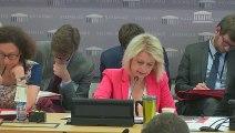 Intervention lors de l'examen du projet de loi relatif à l'énergie et au climat en CDD