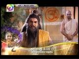 Maharja Kansa (290) -05-06-2019
