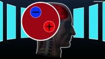 La TEP : Tomographie à Emission de Positons