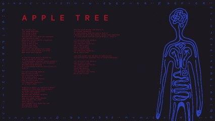 AURORA - Apple Tree