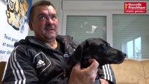 VIDÉO. Châtellerault : son chien avait été tué par trois molosses, la SPA lui en confie un nouveau