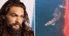 L'acteur Jason Momoa pousse un coup de gueule contre deux pêcheurs qui se sont filmés à couper la queue d'un requin