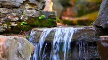 STREAM ON ROCKS - Relaxing water sound - Relax river in mountain - Zen source nature yoga tai chi 放松 استرخاء  휴식 relajación くつろぎ relaxamento отдых বিনোদন विश्राम bersantai ਮਨੋਰੰਜਨ istirahat ontspanning gevşeme agua ماء  水 eau पानी air Wasser 물 воды