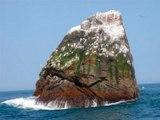 Waveland, el país que se fundó para salvar el océano