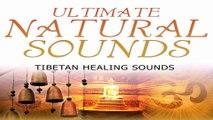 Tibetan Healing Sound, Singing Bowls & Chimes - Meditation, Yoga, Sleep & SPA Music, Relaxing Music for Stress Relief