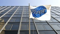 Pfizer Chose Not to Pursue Promising Alzheimer's Finding: Report