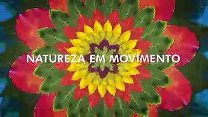Vale - Natureza em Movimento 3