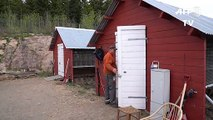 En Norvège, les jours des élevages d'animaux à fourrure sont comptés