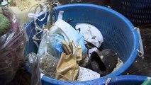 A la pêche au plastique dans l'Adriatique