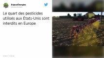 Pesticides. Plus du quart des produits utilisés aux États-Unis sont interdits en Europe