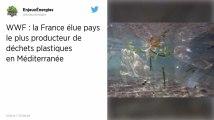 La France, plus gros producteur de déchets plastiques en Méditerranée, selon la WWF