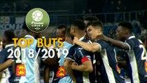 Top 3 buts Havre AC   saison 2018-19   Domino's Ligue 2