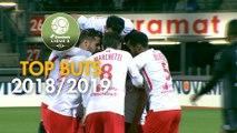 Top 3 buts AS Nancy Lorraine   saison 2018-19   Domino's Ligue 2