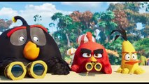 Angry Birds Copains comme Cochons Film - TV Spot