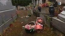 Toulouse   une centaine de tombes profanées au cimetière Terre-Cabade