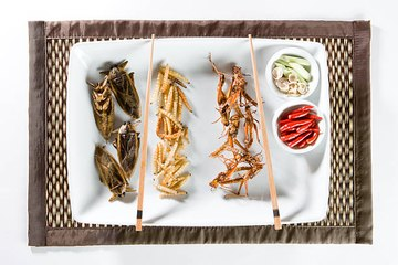 Eating Insects Might Help to Save the Planet