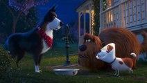 Extrait du film Comme des bêtes 2 - Conseil parental
