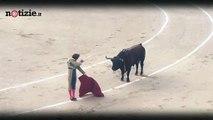 Madrid, ferito gravemente il torero Roman Collado | Notizie.it