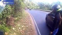Un motard croise la route d'un éléphant... Dangereux