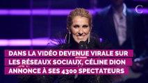 VIDEO. Céline Dion interrompt son concert... pour un fan victime d'une envie pressante !