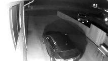 Une créature étrange filmée par une caméra de surveillance