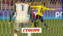 Les buts de Belgique-Ecosse - Foot - Qualif. Euro