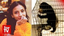 Singer with a sunbear pleads not guilty