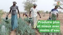 Burkina Faso: Produire plus et mieux avec moins d'eau
