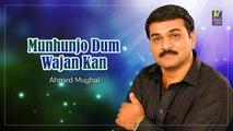 Ahmed Mughal - Munhunjo Dum Wajan Kan - Sindhi Hit Songs