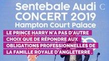 PHOTOS. Meghan Markle va être jalouse : ce câlin très affectueux du prince Harry à Rita Ora lors d'un concert