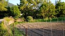 Σε εξέλιξη οι αιτήσεις για τον Δημοτικό Λαχανόκηπο στο Καρπενήσι