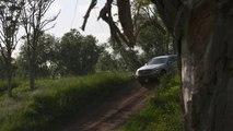 Automobile : Mercedes-Benz ou la nouvelle Family GLC 300d 4MATIC