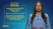 #JOB - 13/06/2019 - Spécial Zoo Parc de Beauval (2)