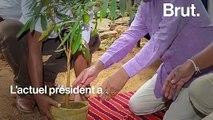 Au Sri Lanka, de nouvelles mesures pour faire face à la déforestation