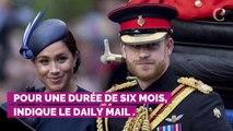 Le prince Harry : ce voyage qu'il aimerait faire avec Meghan Markle et son fils Archie pour continuer le combat de Lady Diana
