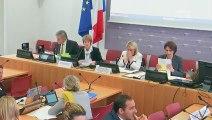 Commission du développement durable : Energie et Climat (suite) - Mercredi 12 juin 2019