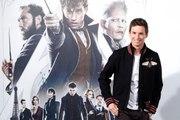 Les Animaux Fantastiques, la nouvelle saga de l'univers Harry Potter