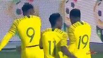 Football   CAN 2019 : Présentation de l'Afrique du sud