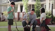 Planting Trees in Your Yard Can Save You Big Bucks in Energy Bills
