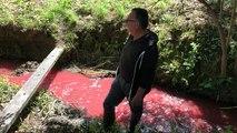 Une pollution rouge constatée dans un cours d'eau se jetant dans la Vilaine