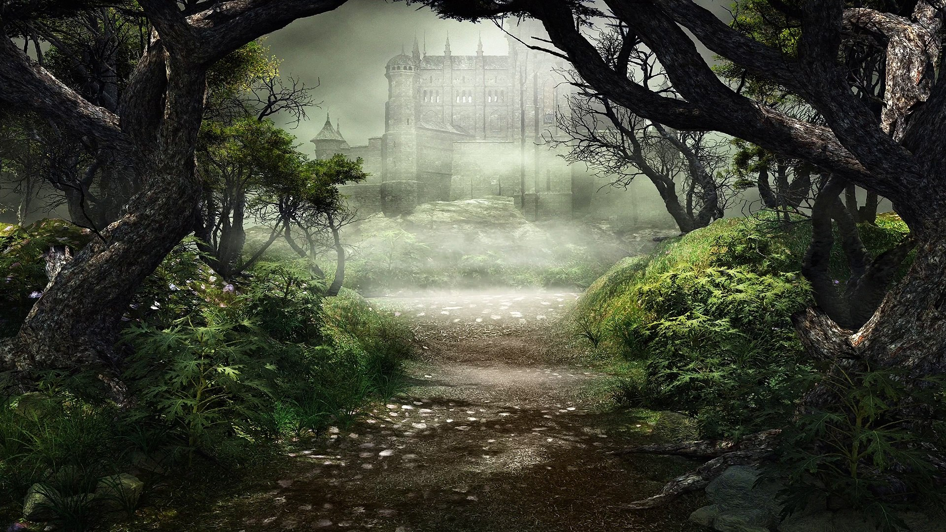 Peaceful Celtic Music: The Hiding Place - 4K - Tranquil Woodland Music, Forest Music & Fantasy M
