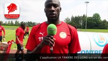 CAN 2019 : Téléchargez l'application Tanière des Lions pour suivre les Lions du Sénégal