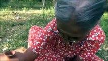 Recette de poisson  Ragoût de Poisson préparé par la grand-mère | la Vie du Village