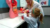 Jouer le rôle des enfants dans le centre de les jouer de façon interactive les enfants en plein air
