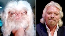 Animals That Look Like Celebrities, Famous People And The Infamous - FUNNY!